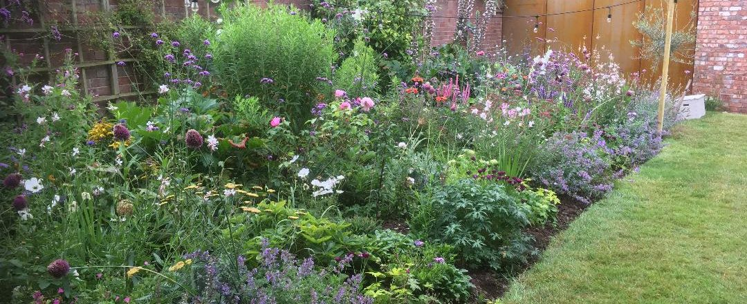Lady Horticulturist Traditional, Southwest Garden Plants